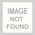 LR-31504-10735 / Floral Stripe Linen/Rayon 70%Rayon 30%Linen